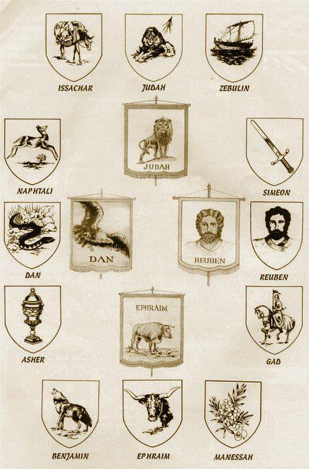 La Tribu De Dan 12 Tribes Of Israel Bible Knowledge Bible Facts