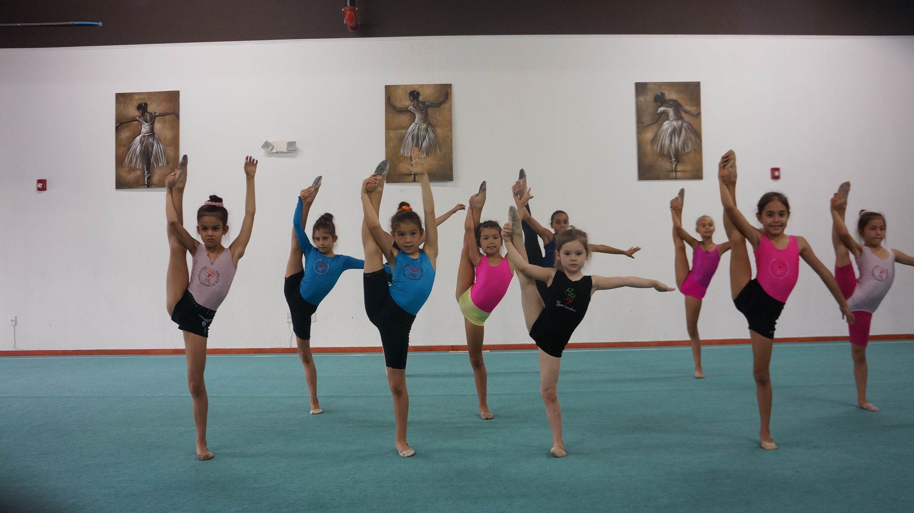 Gymnastics miami ik school of gymnastics in miami