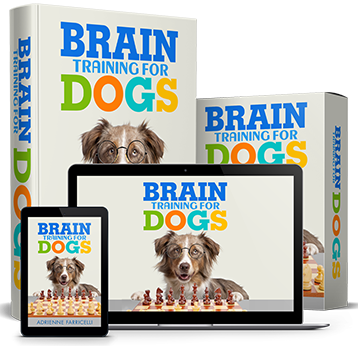 Gaanhri Dimi On Training Your Puppy Online Dog Training Training Your Dog