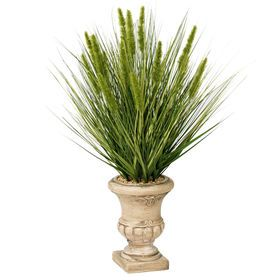 $39.99 At Home Picture of 31 GRASS IN TAN URN POT