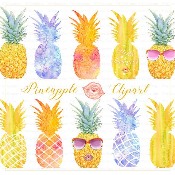Summer Clipart Watercolor Tropical Fruit Modern Hand Painted