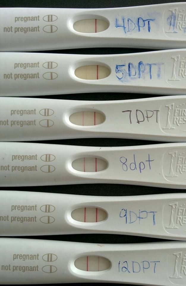 Pin on Surrogate Pregnancy Tests!!