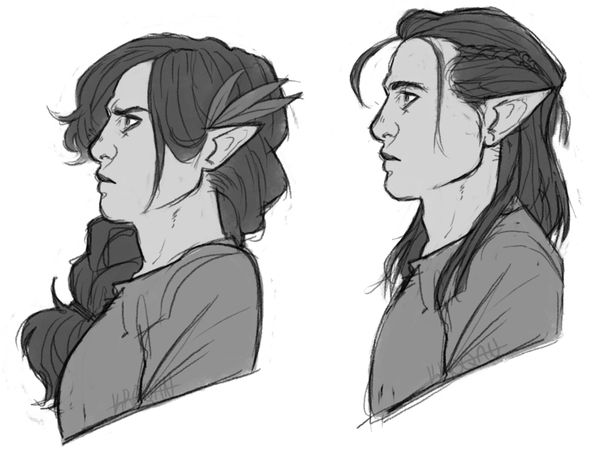 Elves? Half elves maybe?