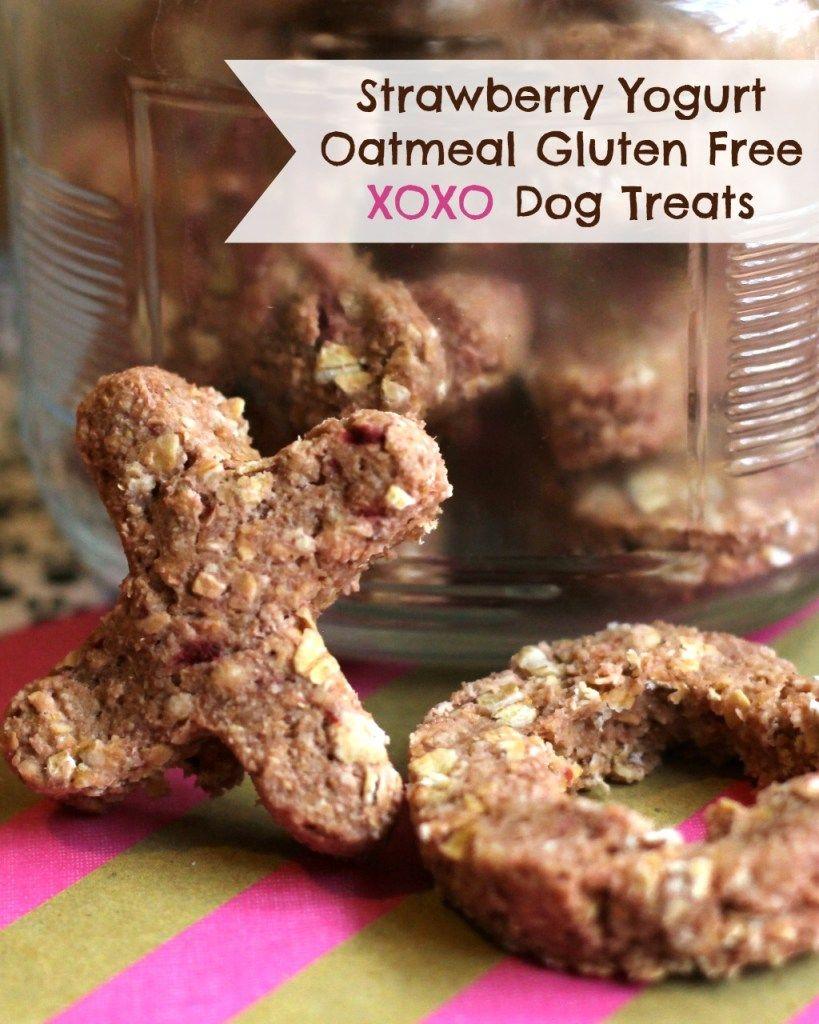 Homemade Gluten Free Xoxo Dog Treats Homemade Dog Cookies Dog