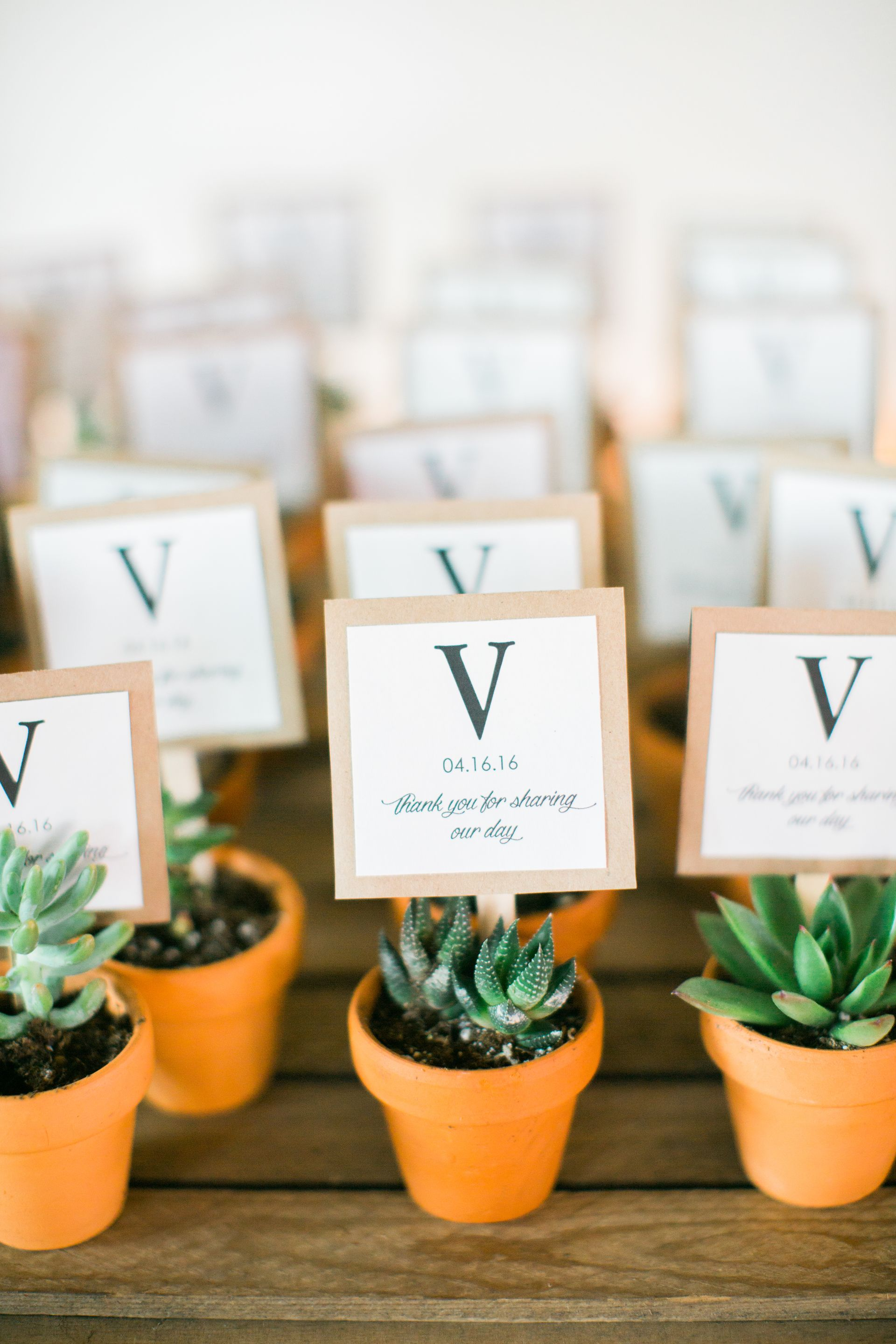 Earthy Blumen Gardens Romance - Sycamore, IL | Potted succulents ...