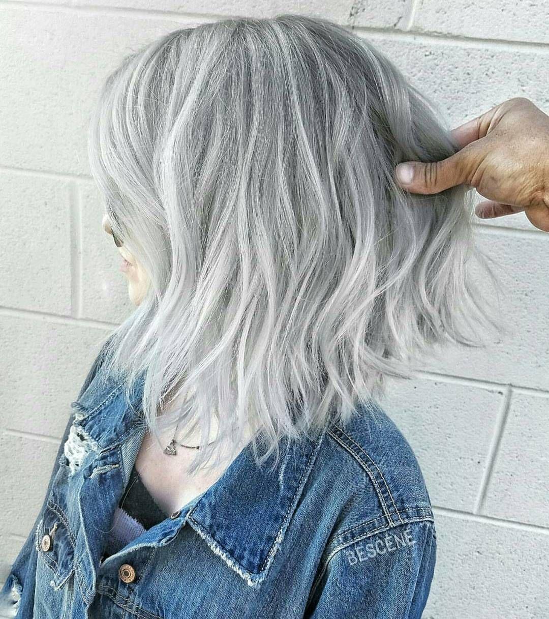 Bones bonesspanekk ucium a silver fox now ud  Hair  Pinterest
