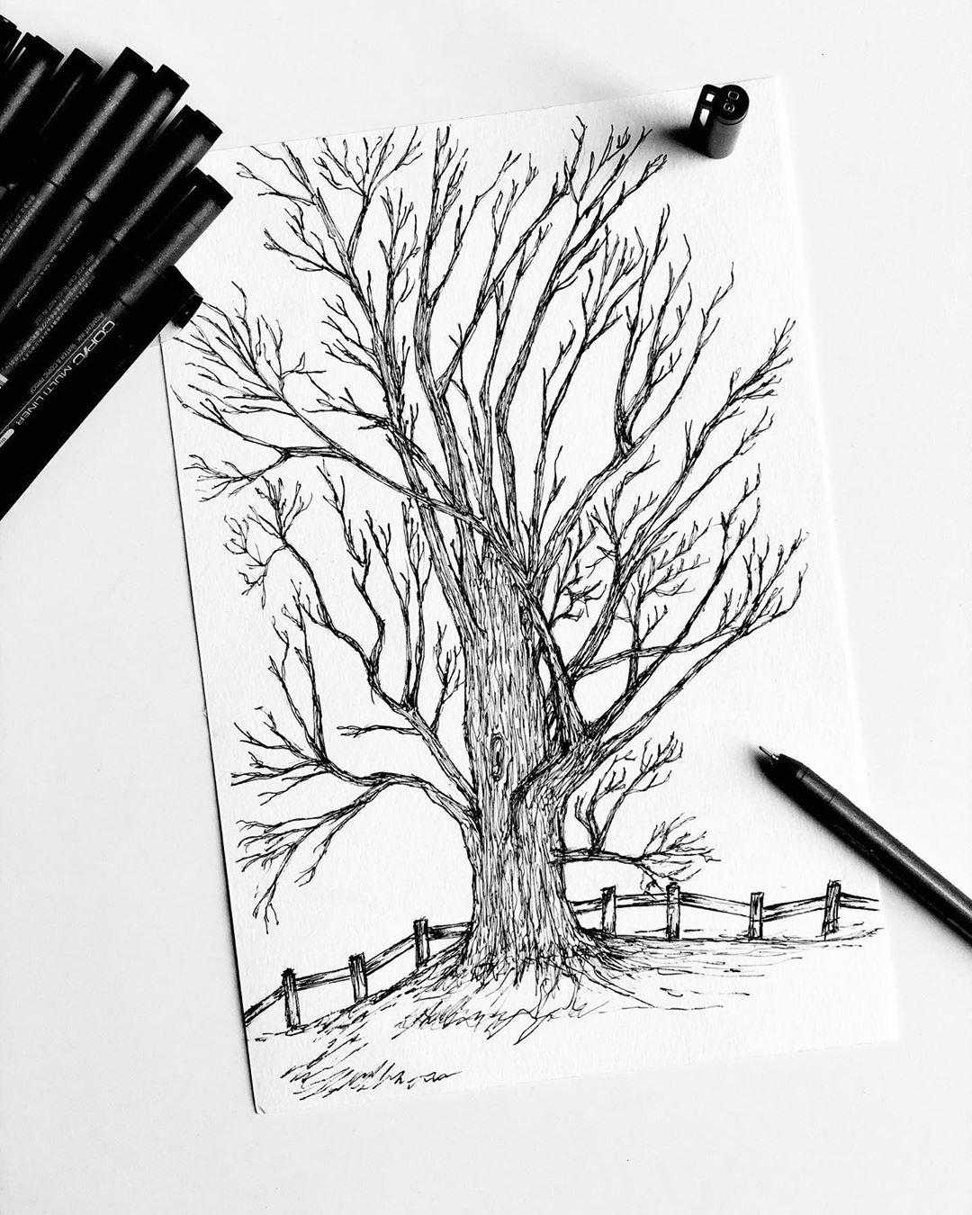 Art Artist Inkart Blackandwhite Ink Pen Nature Draw