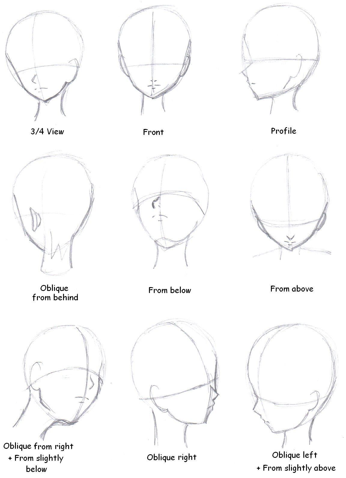 Head Perspectives Drawing Tutorial Drawing Tips Anime Drawings