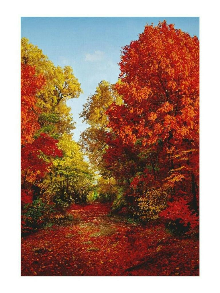 Window decor for fall  american byways digital print fall scenic panel autumn