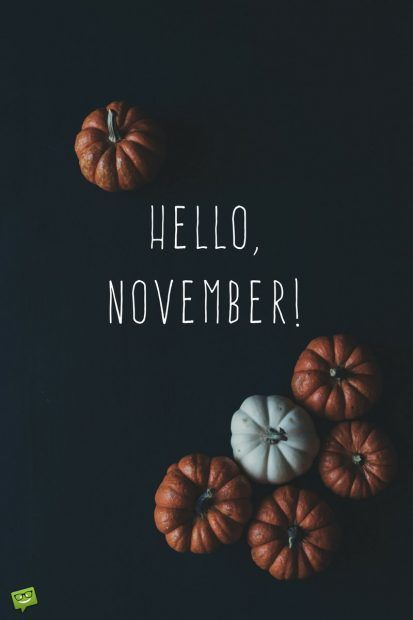 Hello November on background with pumpkins on blackboard., #background #blackboard #november...