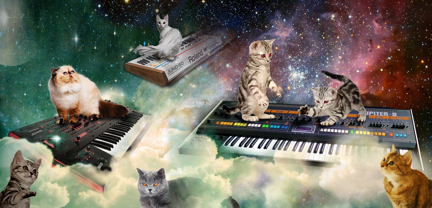 Cat Synth Space Madness Imgur Space Cat Cats Synthesizer