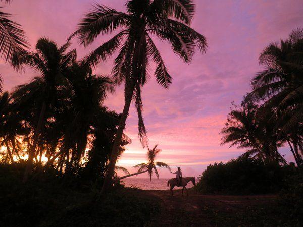 Sunrise on Turtle Island. #horse #sunset #beach
