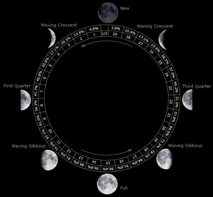 The Eclectic Wytch History Of Lunar Calendars There Are Three