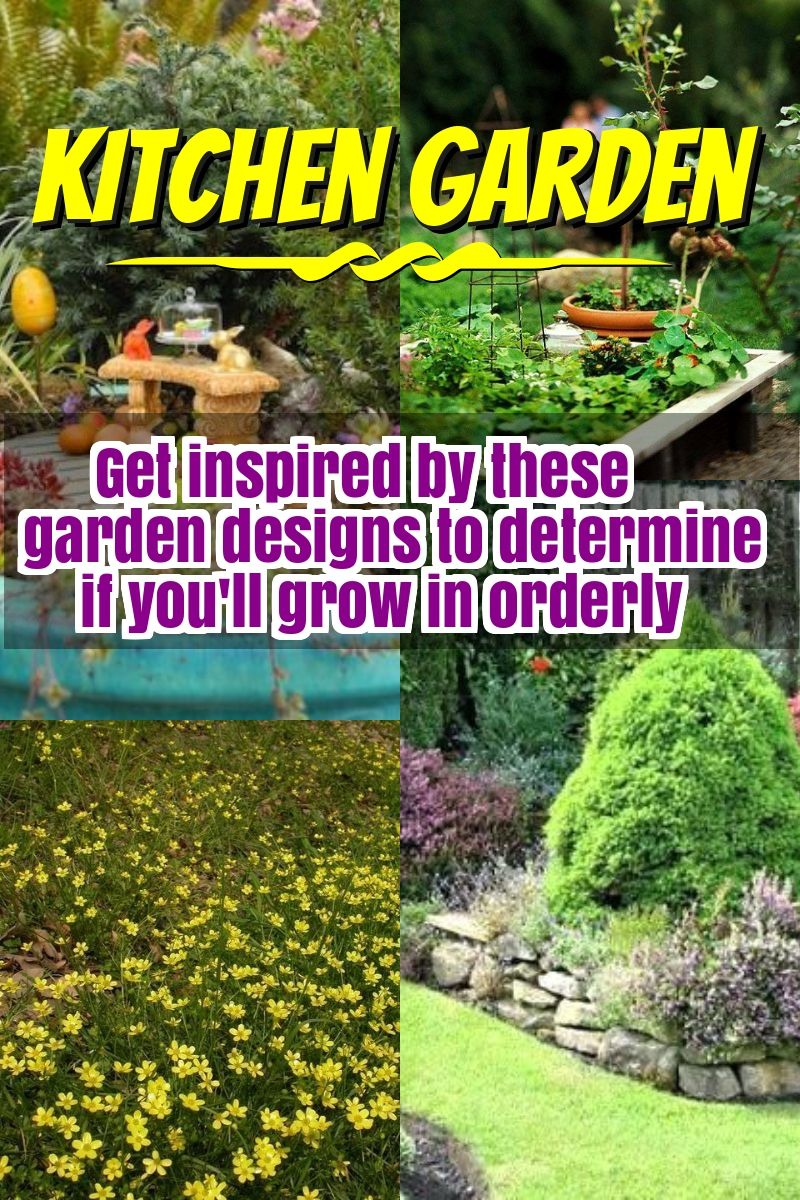 Finally Have The Garden That You Have Been Dreaming Of Backyard Garden Landscape Small Backyard Gardens Backyard Garden Design Backyard garden what to grow