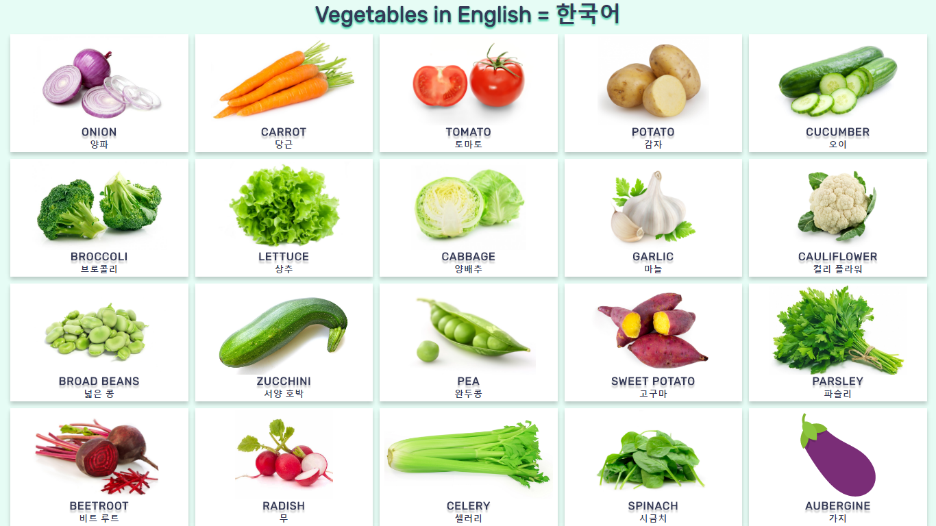 영어로 된 야채 Vocabulary vegetables in English and Korean with