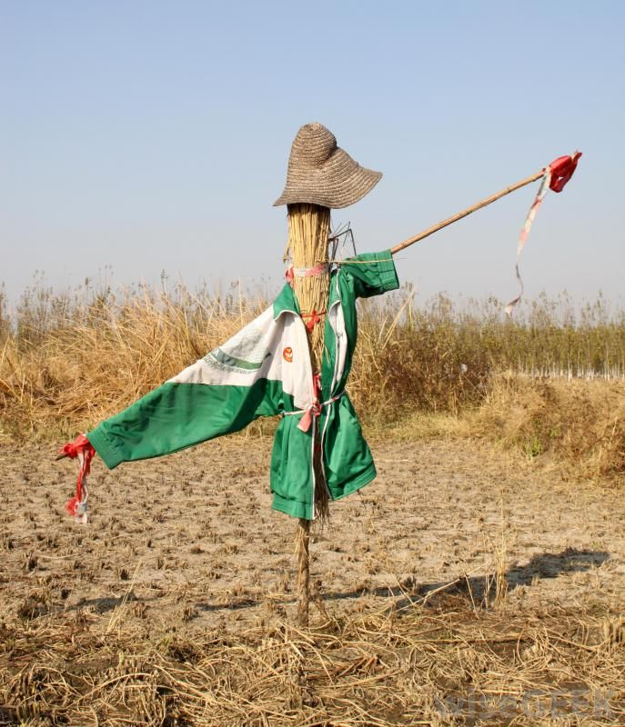 Early scarecrows Google Search Halloween decorations