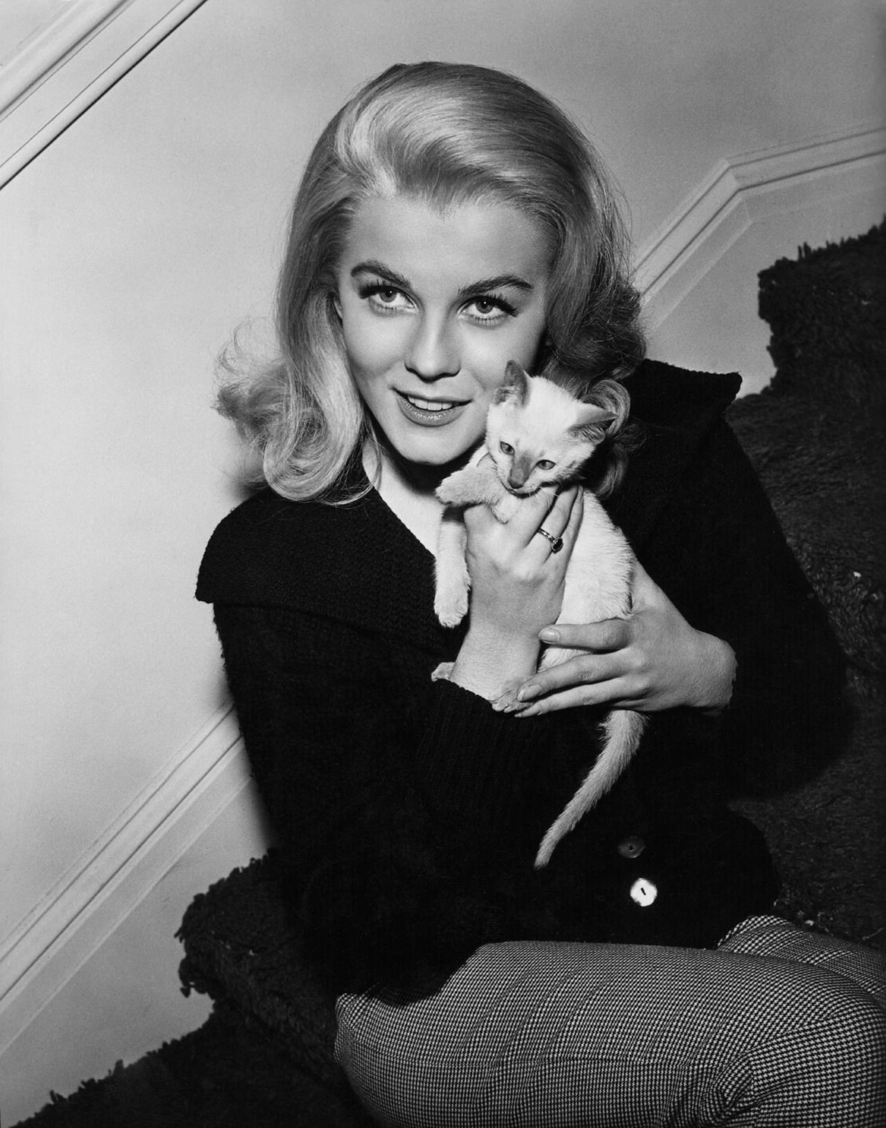 Kitten With A Kitten Celebrities With Cats Siamese Cats Ann Margret