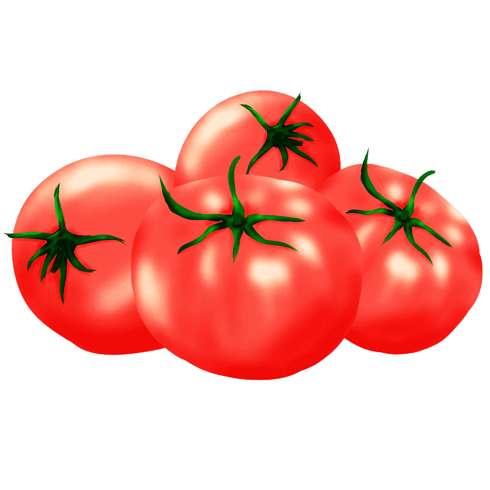 トマトの無料イラスト 手書きのおしゃれな野菜フリー素材 トマト