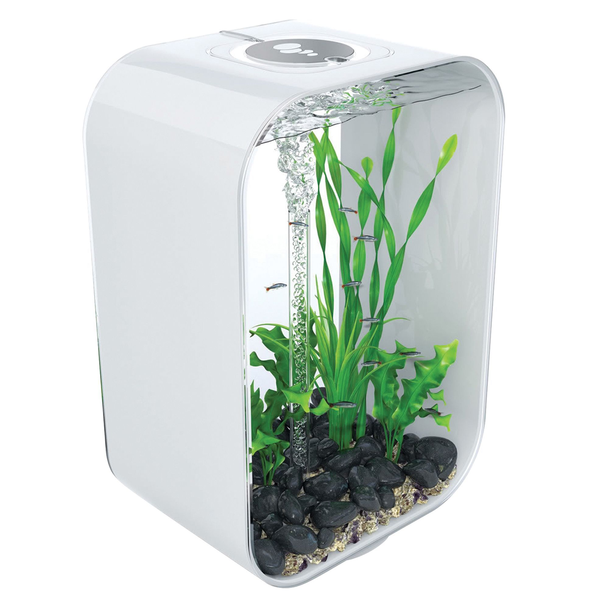 biOrb LIFE 12 Gallon LED Aquarium, White in 2020