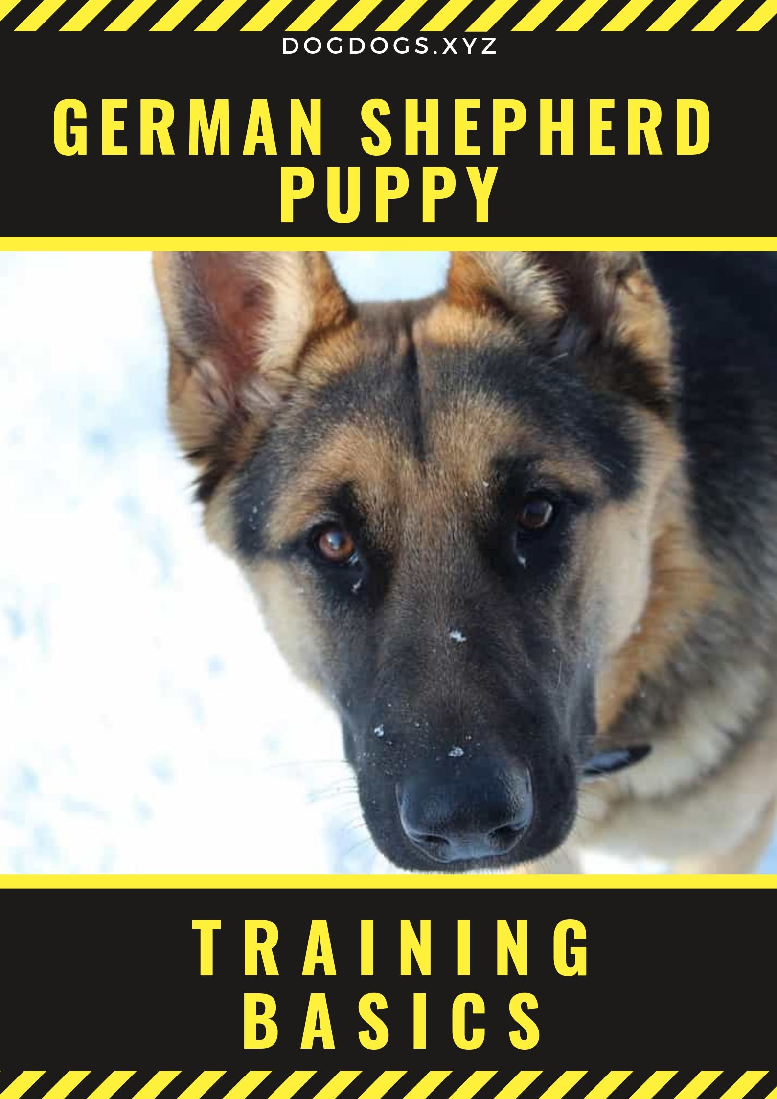 The Benefits Of German Shepherd Puppy Training Basics German