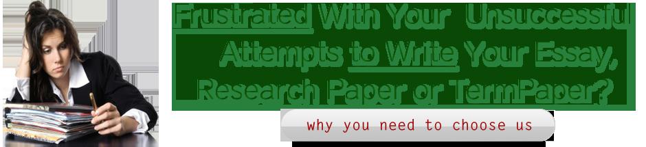 Term paper writer service