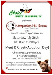 Companion Pet Rescue Adoption Event Choice Pet Supply Danbury