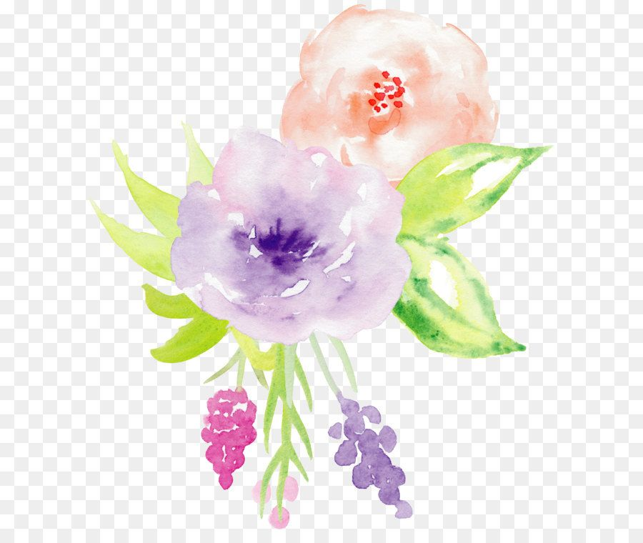 Hand Painted Watercolor Roses Decorative Elements Watercolor