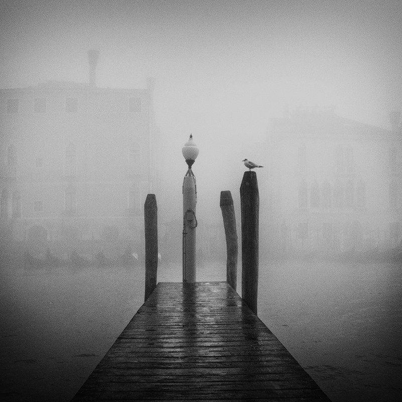 by Ando Fuchs #monochrome #blackandwhite