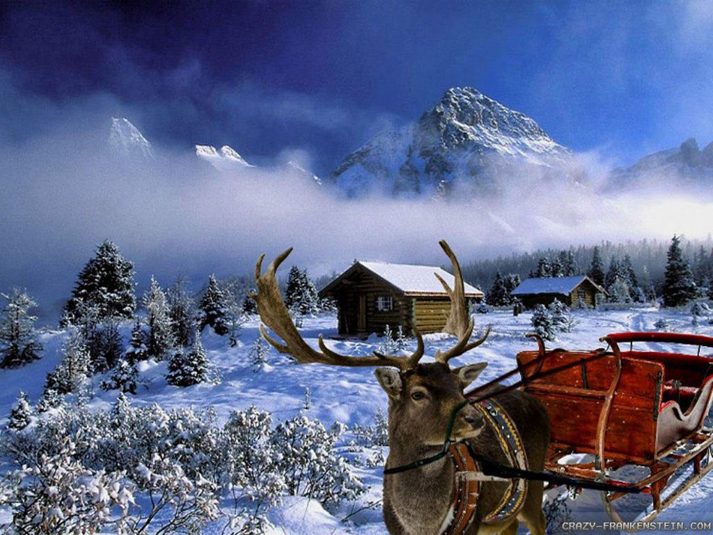 Winter christmas picture amazing wallpapers pinterest winter scene wallpapers enchanting and chilling examples wallpapers winter scenes wallpapers voltagebd Image collections