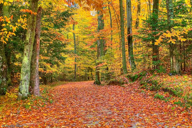 Hdr Door County Fall Colors By Kayem Dubs Door County Wisconsin Fall Door County Wisconsin Wisconsin Fall Colors