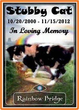#OTRB Stubby Cat (#1) xo
