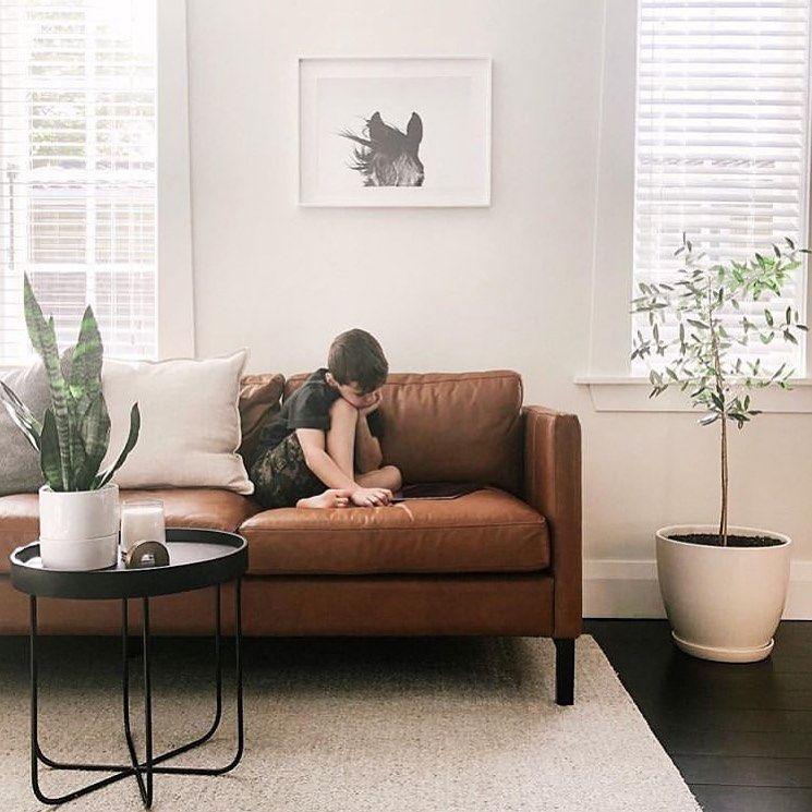 Lounge Goals Furniture Nz Freedom Furniture School Holidays