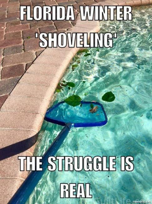 Monday Memes Hello Spring Florida Funny Funny Pictures Florida Quotes