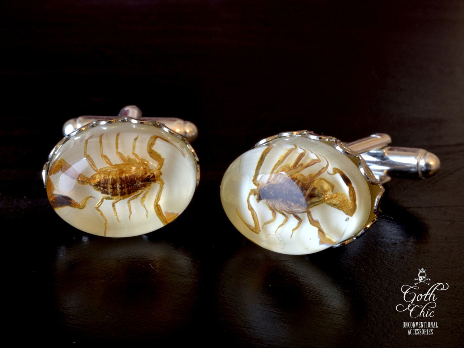 Scorpion Cufflinks -  Taxidermy Manchurian Golden Scorpion cuff links - by GothChicAccessories on Etsy