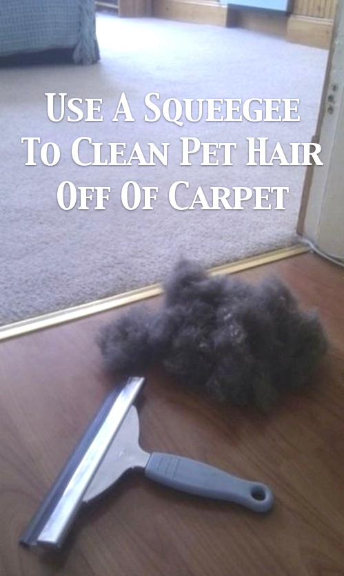 55 Must Read Cleaning Tips Tricks And Hacks For The Home