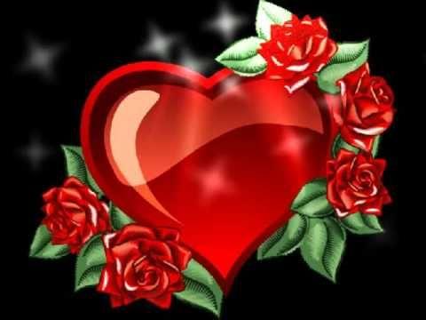 Herzliche Grüße Für Dich Rote Rosen Schenk Ich Dir