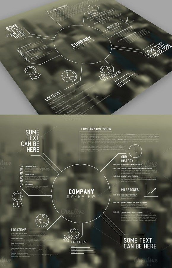 company overview template business infographic business
