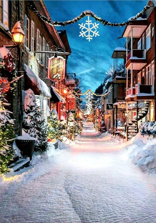 Quebec City,Canada (With images) Winter scenery