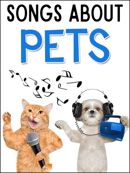 Pets Songs For Kids Preschool Pets Unit Classroom Pets Pets