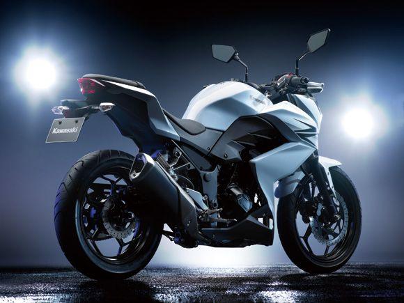 Kawasaki Ninja 300 Naked Bestest Motorcycles Motorcycle