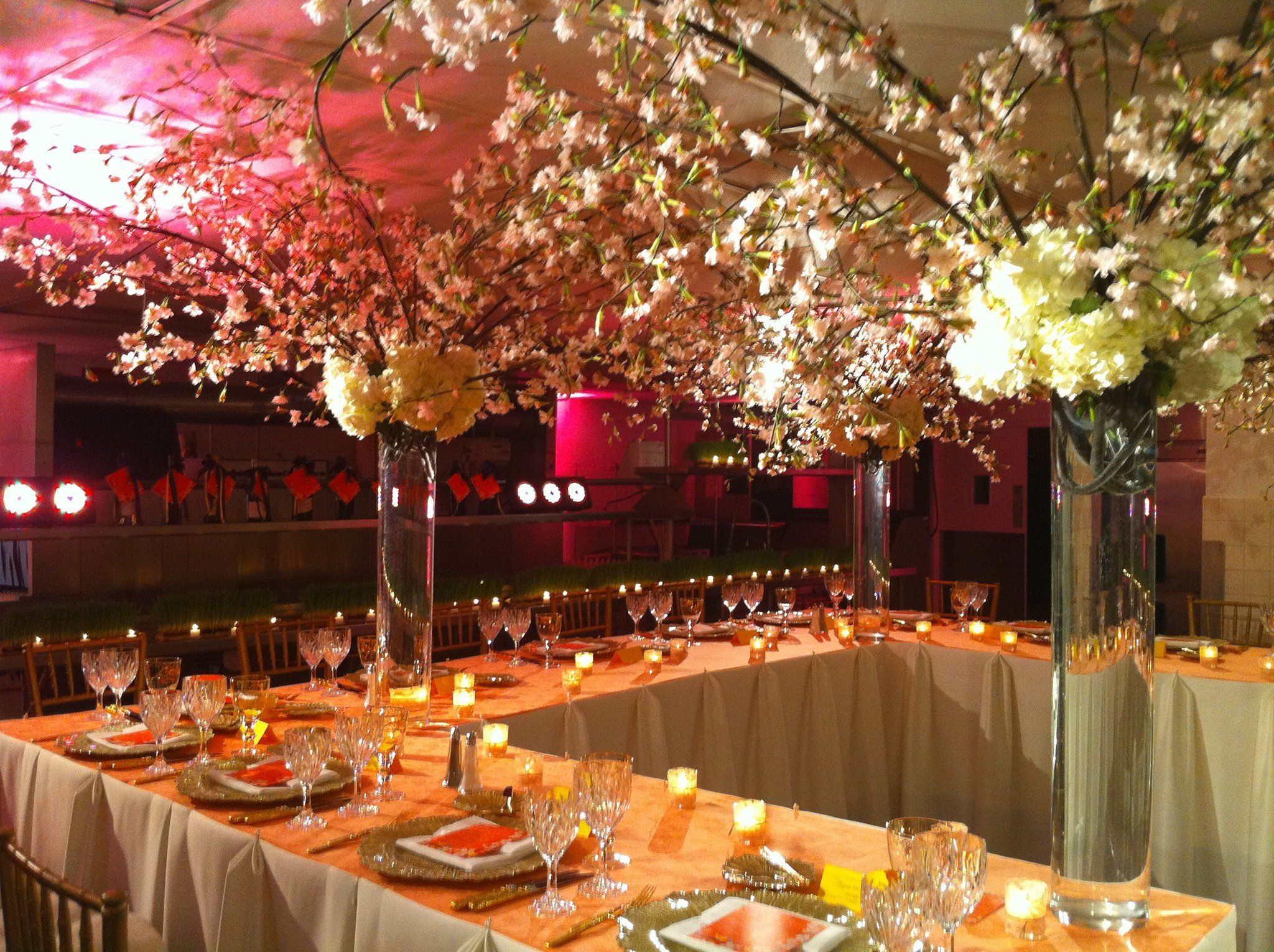 cherry blossom tree *the garden gate | Preferred Partners ...