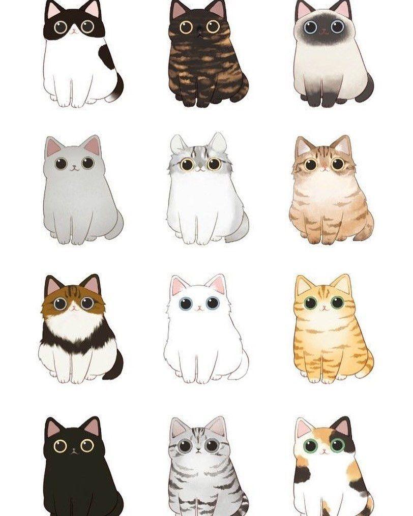 #cat #catsofinstagram #catlovers #cats #catstagram