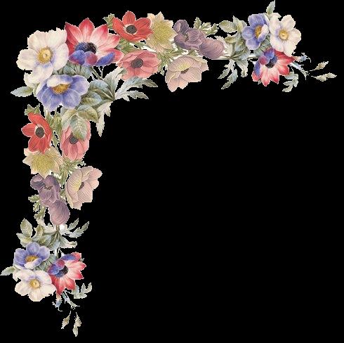 Pin By Pauline Zinie On Flores Ii Flower Art Flower Border Clip Art Borders