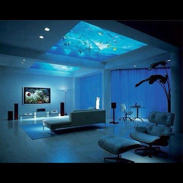 Home Aquarium Design Ideas: Awesome Room With Aquarium Roof!