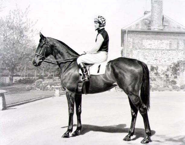 This is the mighty Pendil and Richard Pitman    Horse Racing