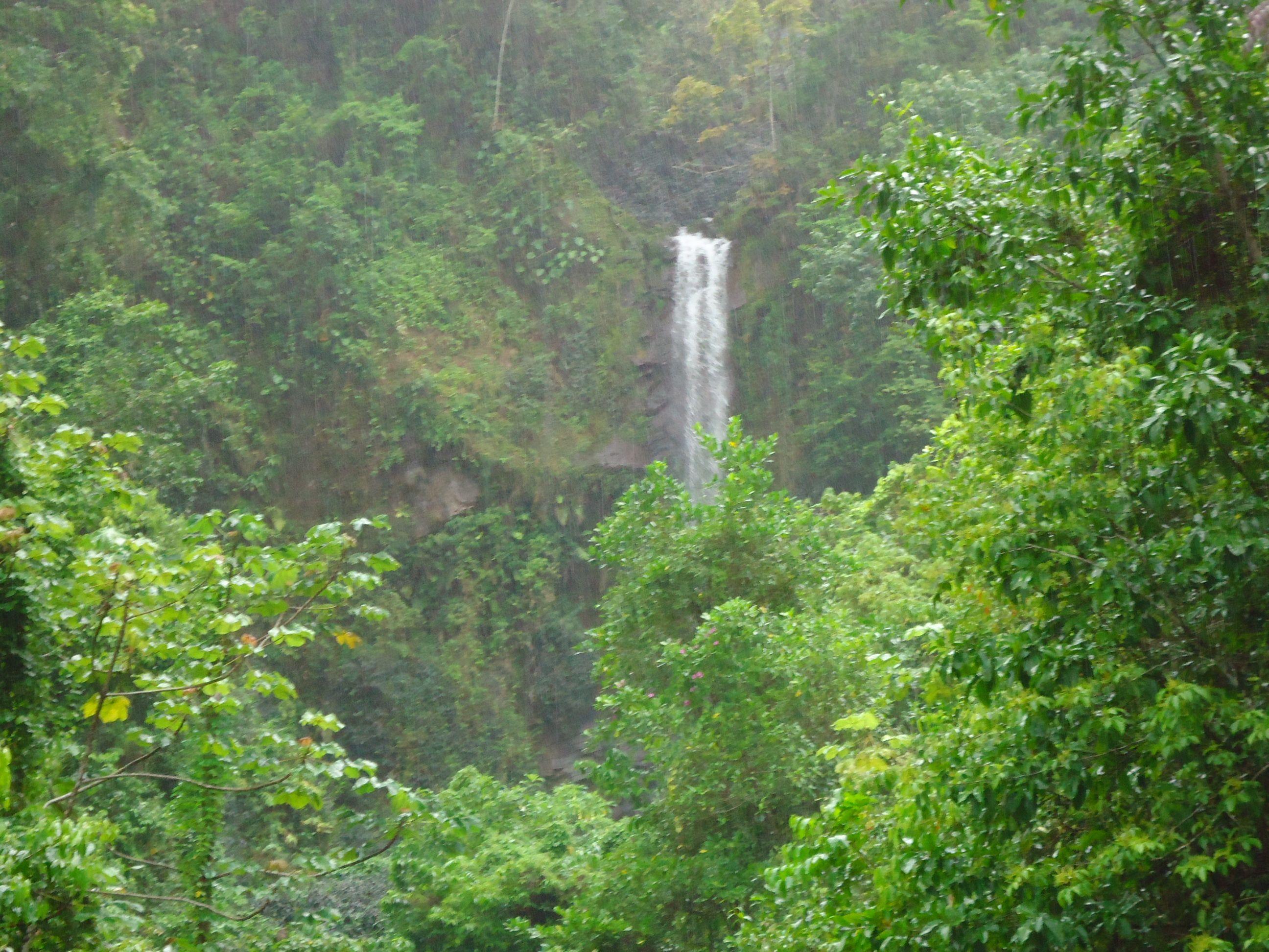 Cascade Falls Blue Mountains Jamaica Cascade Falls