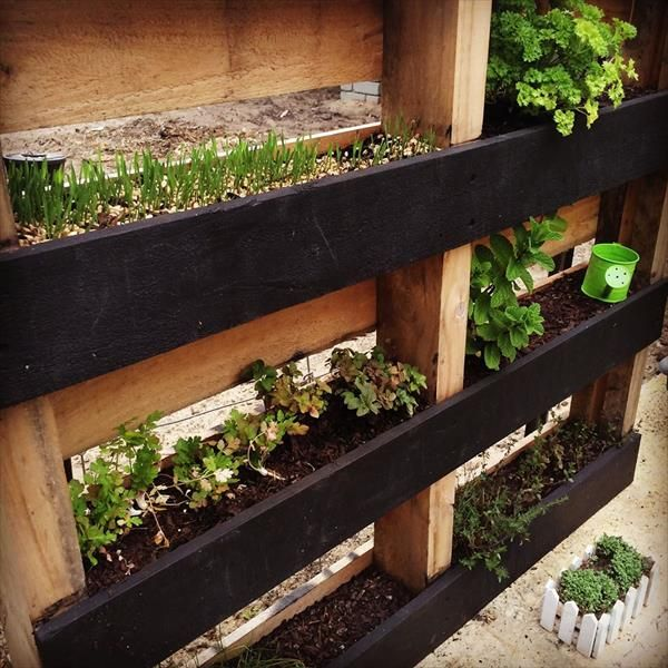 20 Creative Diy Vertical Gardens For Your Home: DIY Pallet Vertical Herb Garden: Hanging Planter