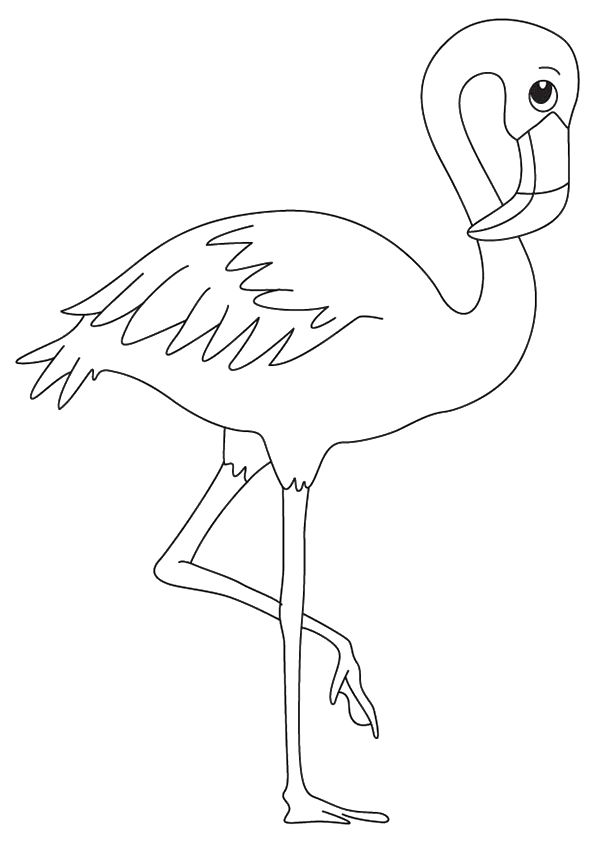 Print Coloring Image Momjunction Flamingo Coloring Page Bird Coloring Pages Flamingo Craft
