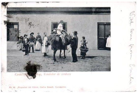 """El """"arguenero"""", vendedor de verduras en Valparaiso. Los fruteros ofrecían verduras y frutas por las calles, con el pregón propio de los """"argueneros"""", como los llama Luis Aguirre ya en el siglo XX. Agrega que su popular nombre proviene de """"los dos enormes carpachos sueltos de cuero tejido que estaban a ambos lados de su caballo o mula"""", Eran estos verduleros los distribuidores finales que probablemente se abastecían comprando el producto a los huasos... Cortesía: Pedro Encina, Santiago…"""