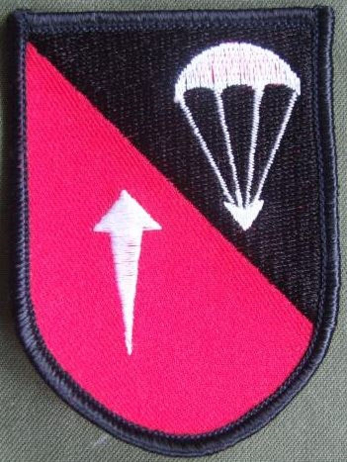 Germany 253rd Airborne Battalion Shoulder Patch The Patch Is In Near Mint Condition Insignias Militares Insignias Militar